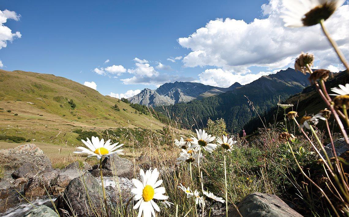 Sommer in Samnaun, ©Andrea Badrutt